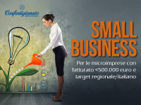 Small Business_EVID
