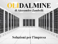 2019 Olidalmine_news