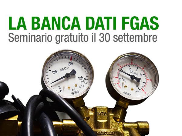 EVID_bancadati-fgas-settembre-2019