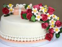 EVID_torta